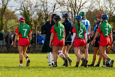 "9th November 2019 ""AIB"" Munster Senior Camogie Club Championship Final - Drom & Inch (Tipperary) 0-8(8) Scariff-Ogonnnelloe (Clare) 1-7(10) at Cappamore, Co Limerick."