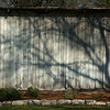 Shed Shadows
