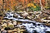 Smoky Mountain Fall Stream
