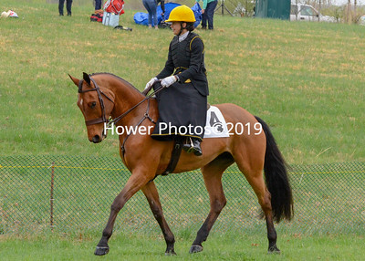 2019 Loudoun County Hunt Point to Point-Edited-4
