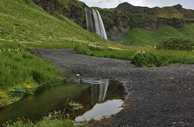 DA096 DN Iceland