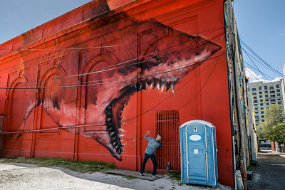 DA077,DT,St Pete, FL Murals