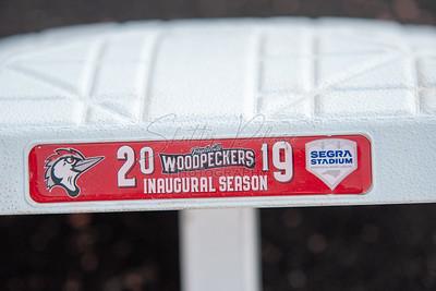 20190423 - Woodpeckers vs Keys