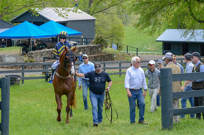 2019 Middleburg Hunt Point to Point - Edited-3