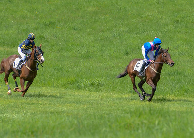 2019 Middleburg Hunt Point to Point - Edited-9