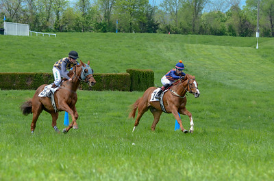 2019 Middleburg Hunt Point to Point - Edited-22