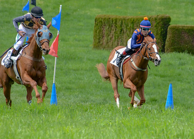 2019 Middleburg Hunt Point to Point - Edited-16