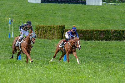 2019 Middleburg Hunt Point to Point - Edited-17