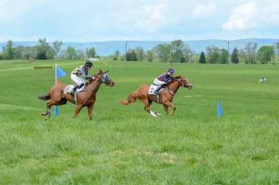 2019 Middleburg Hunt Point to Point - Edited-28