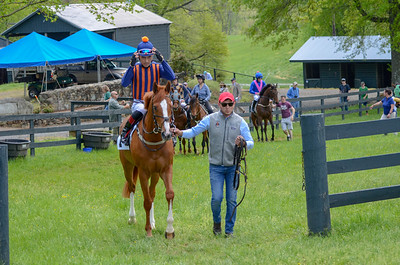 2019 Middleburg Hunt Point to Point - Edited