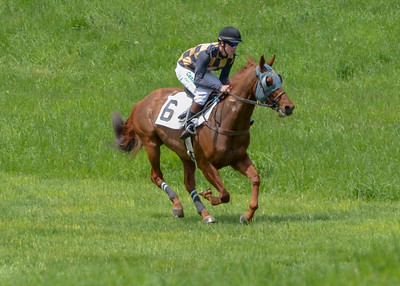 2019 Middleburg Hunt Point to Point - Edited-8