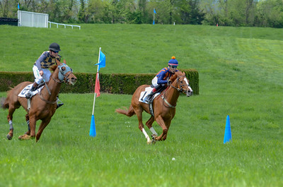 2019 Middleburg Hunt Point to Point - Edited-21