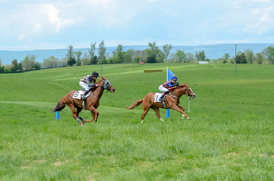 2019 Middleburg Hunt Point to Point - Edited-27