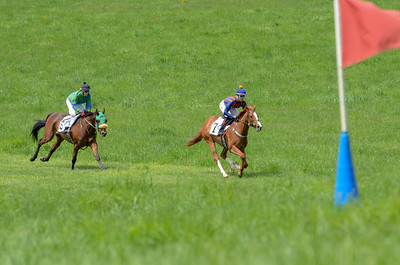 2019 Middleburg Hunt Point to Point - Edited-10