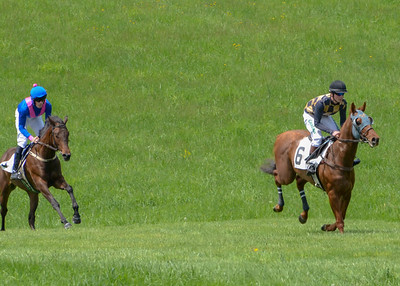2019 Middleburg Hunt Point to Point - Edited-7