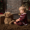 Christmas Mini Sessions 2018 (391)