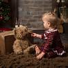 Christmas Mini Sessions 2018 (392)