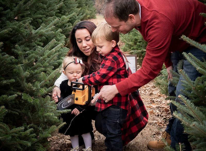 Meyer Family - Tree Farm 2019 (79)