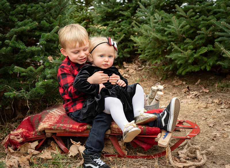 Meyer Family - Tree Farm 2019 (107)