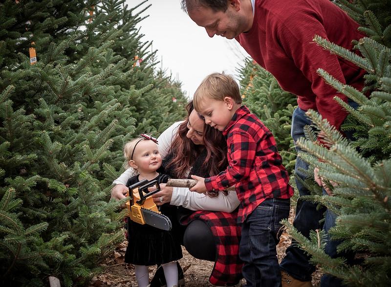 Meyer Family - Tree Farm 2019 (88)