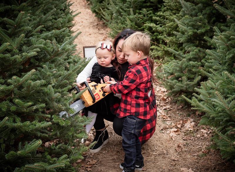Meyer Family - Tree Farm 2019 (76)