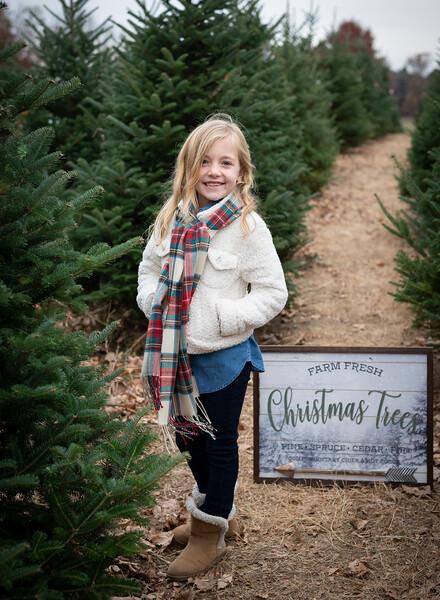 Will Family Tree Farm 2019 (12)