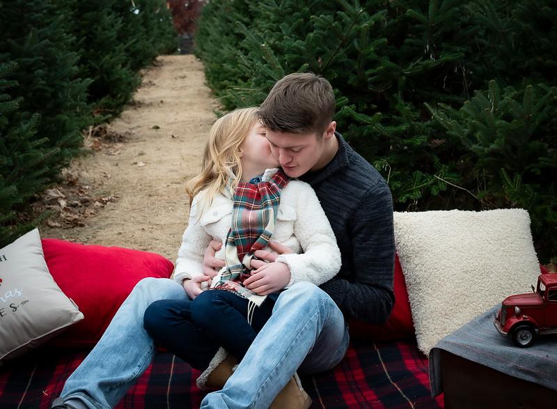 Will Family Tree Farm 2019 (58)