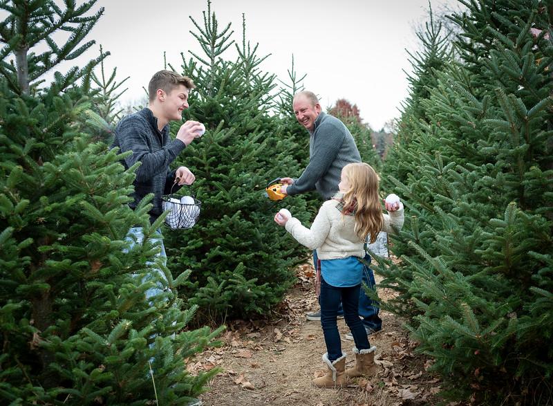 Will Family Tree Farm 2019 (101)
