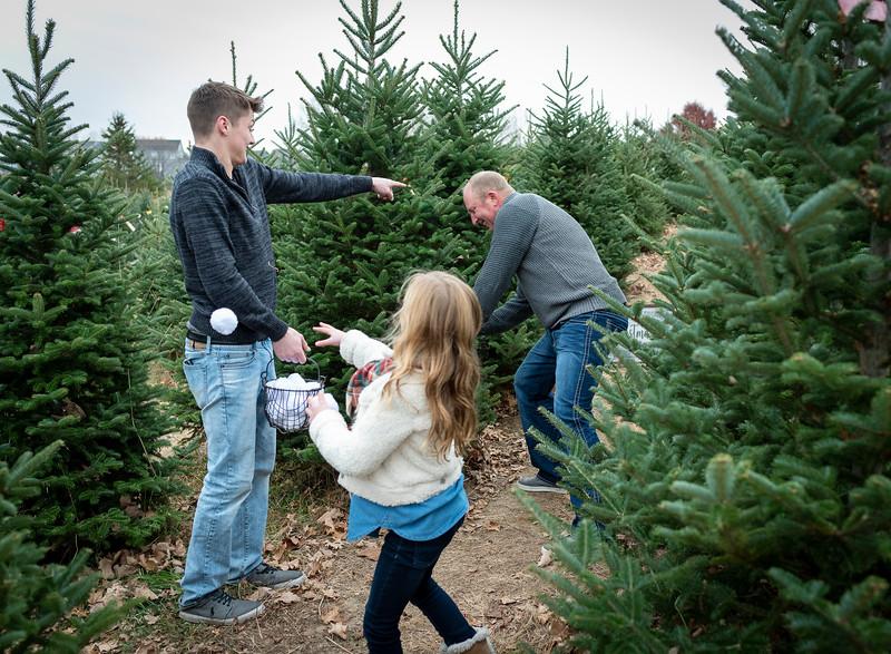 Will Family Tree Farm 2019 (111)