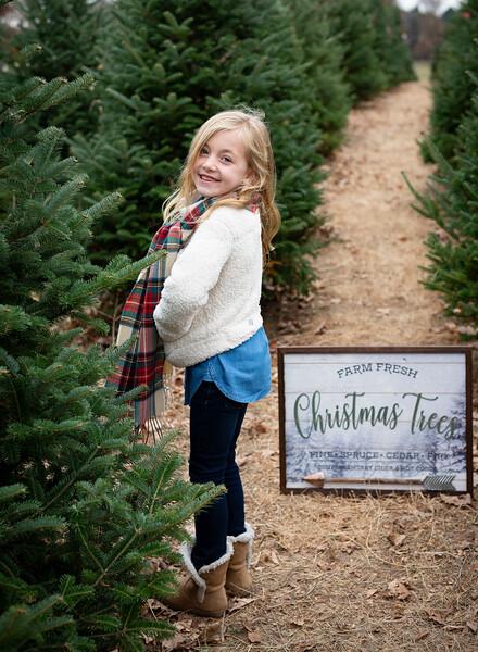 Will Family Tree Farm 2019 (11)
