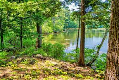 By the Pond - Near Dublin, New Hampshire