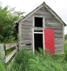 DA104,DP,Old Shed with a Red Door