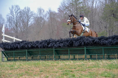 2019 Old Dominion Hunt Point to Point-4
