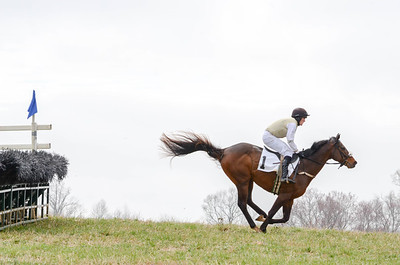 2019 Old Dominion Hunt Point to Point-257