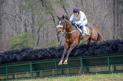 2019 Old Dominion Hunt Point to Point-13
