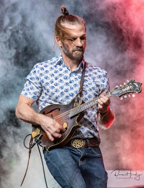 Dennis Ludiker, South Austin Jug Band