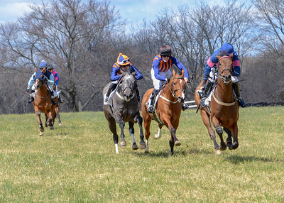 2019 Orange County Hunt Point to Point-25