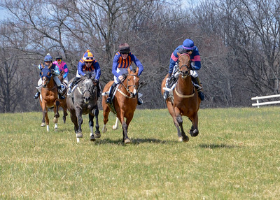 2019 Orange County Hunt Point to Point-24
