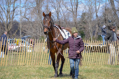 2019 Orange County Hunt Point to Point