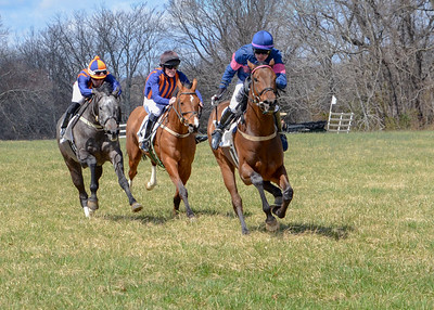 2019 Orange County Hunt Point to Point-28