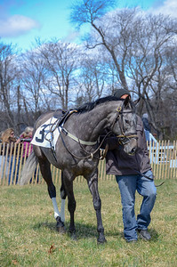 2019 Orange County Hunt Point to Point-5