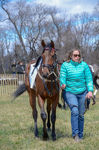 2019 Orange County Hunt Point to Point-3
