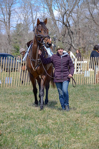 2019 Orange County Hunt Point to Point-8