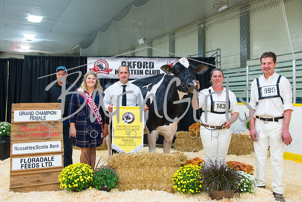 2019 Oxford County Holstein Show