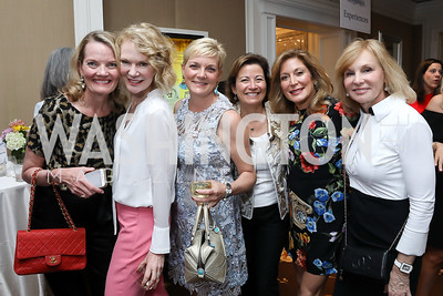Sara Reges, Maura McGinn, Julie Warin, Nancy Nolting, Christine Parseghian, Nicole Geller. Photo by Tony Powell. 14th Annual Women & Wine. Ritz Tysons. April 24, 2019