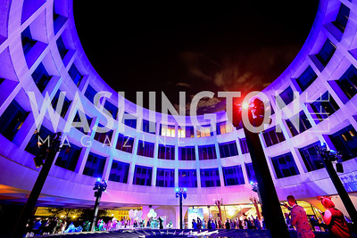 Photo by Tony Powell.1st Annual Hirshhorn Ball. June 15, 2019