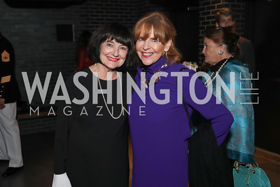 Judy Whittlesey, Susan Davis. Photo by Tony Powell. 2019 Heroes & History Makers. The Anthem. October 23, 2019