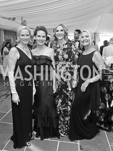 "Shannon Stichman, Colleen Harkins Carter, Kathy McPherson, Christina Hull. Photo by Tony Powell. 2019 Hillwood ""Black & White"" Gala. June 4, 2019"