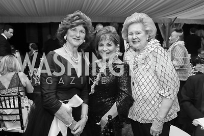 "Marcia DeWitt, Annie Totah, Beth Newburger Schwartz. Photo by Tony Powell. 2019 Hillwood ""Black & White"" Gala. June 4, 2019"