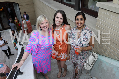 Emily Neifeld, Alexa Jostes, Rachna Goyal. Photo by Tony Powell. 2019 McLean Project for the Arts Spring Benefit. The Falls. May 16, 2019